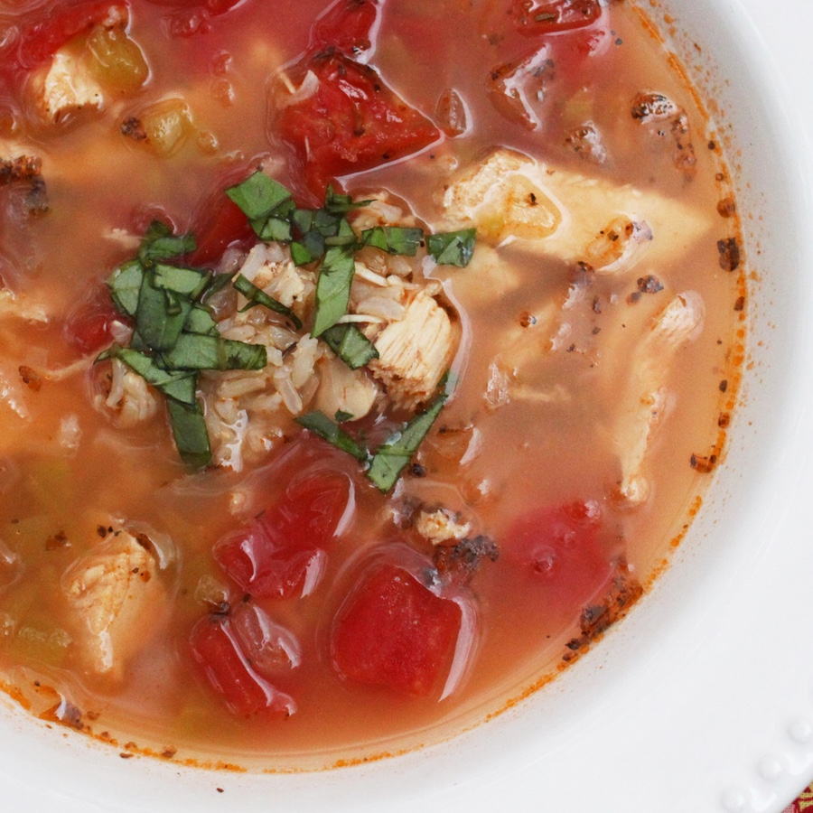 Salsa chicken and rice soup