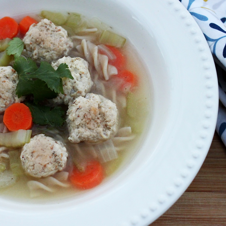 Chicken Meatball and Noodle Soup