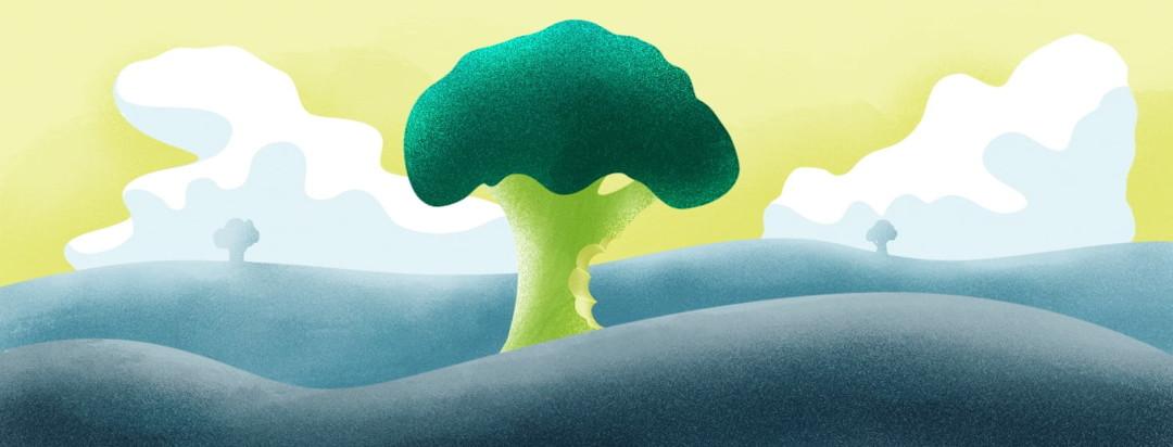a giant broccoli tree