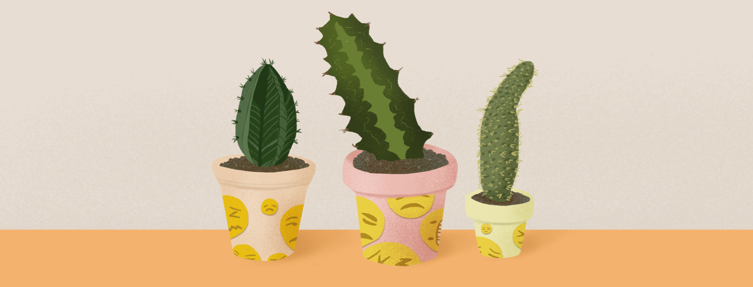 Three cacti of varying sizes in flower pots with upset, frustrated emoji decorations