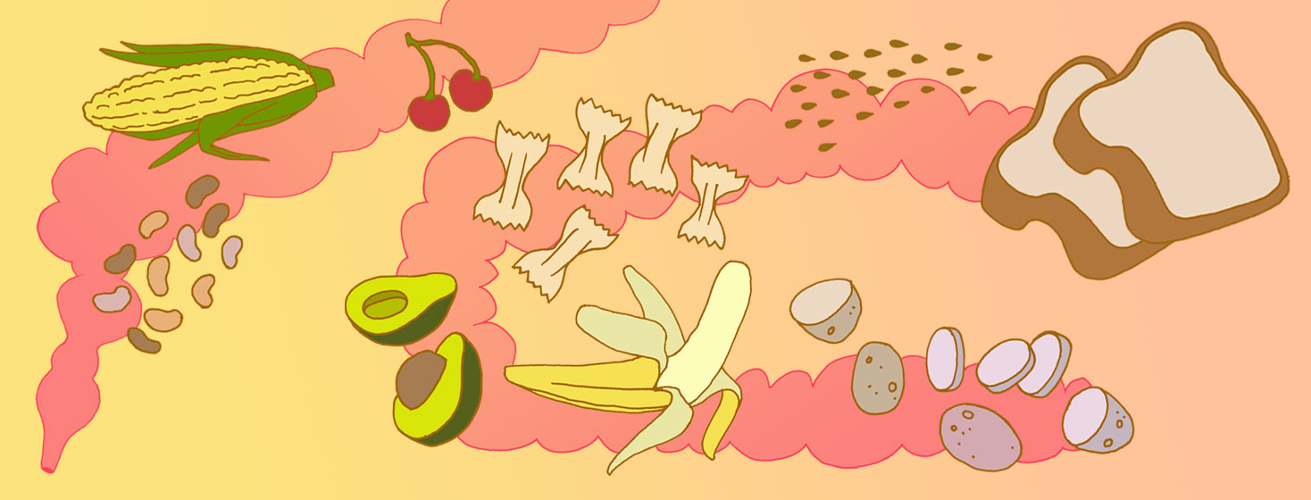 Illustrations of corn, pasta, avocado, banana, cherries, bread, and legumes over an intestine-like abstract background.
